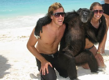 Chimpanzee-Poses-With-Tourists-on-Beach-of-Cancun-478044378_2819x2079.jpeg